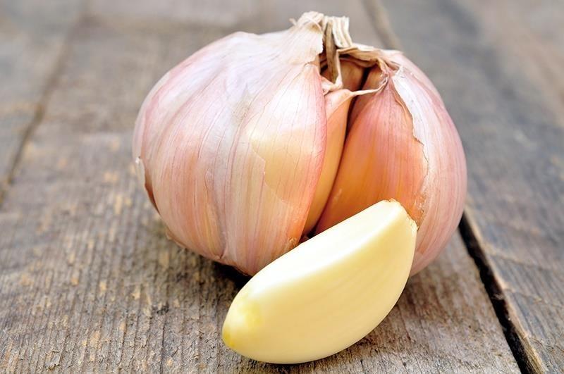 Kết quả hình ảnh cho Garlic