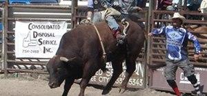 Bull-ies