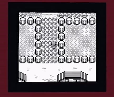 This Guy Built Pokémon Red in Minecraft Without Mods & You Can Play It