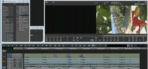 Use the Effects palette in Avid Media Composer 5