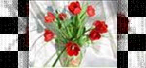 Make a Valentine Tulip vase