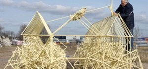 Theo Jansen's Magnificent Strandbeests