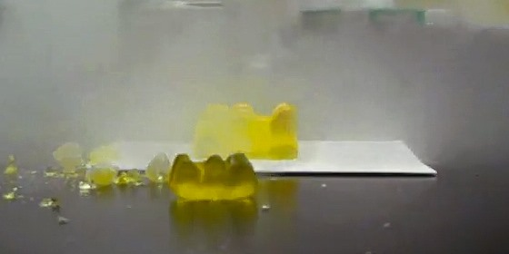 How to Mutilate Candy Gummy Bears with Exploratory Science Experiments