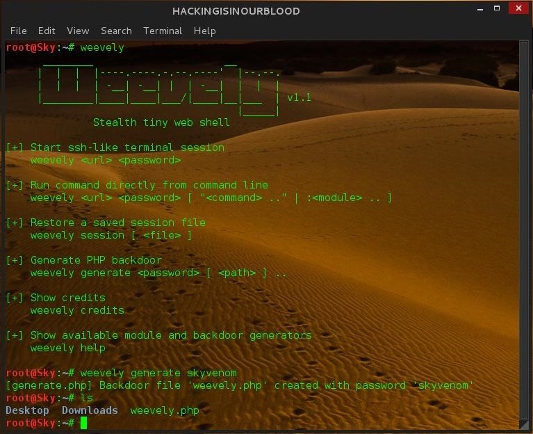 HIOB: How to Generate Web Backdoors { PHP } Using Weevely in Kali Linux