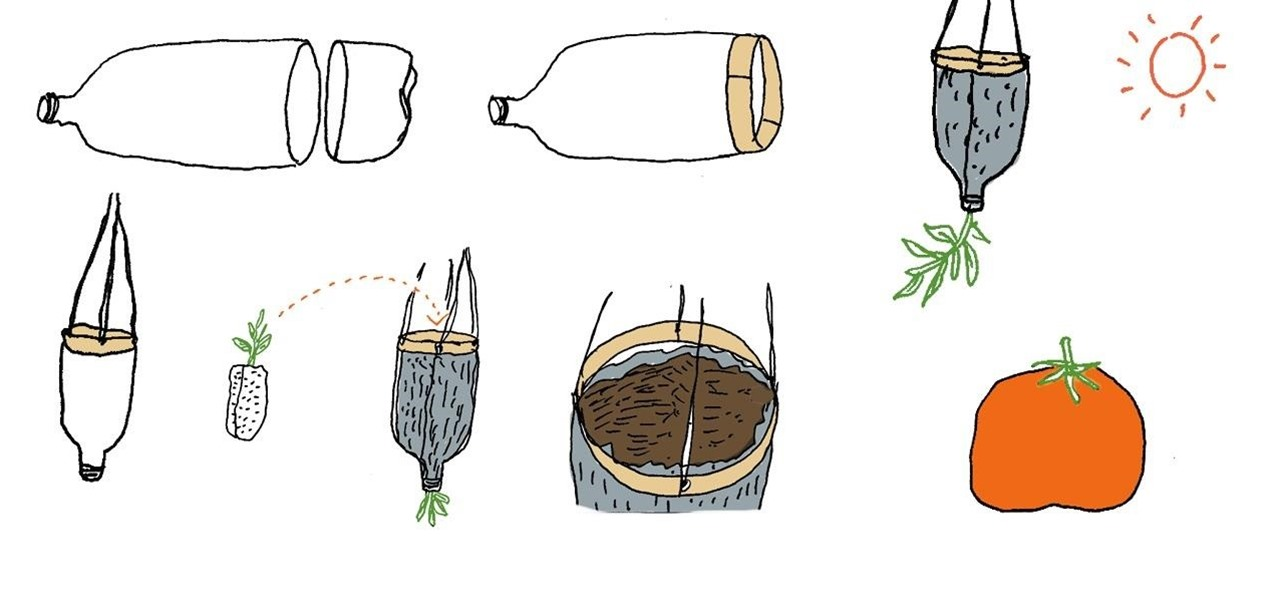 Make an Upside-Down Tomato Planter Using an Empty Soda Bottle