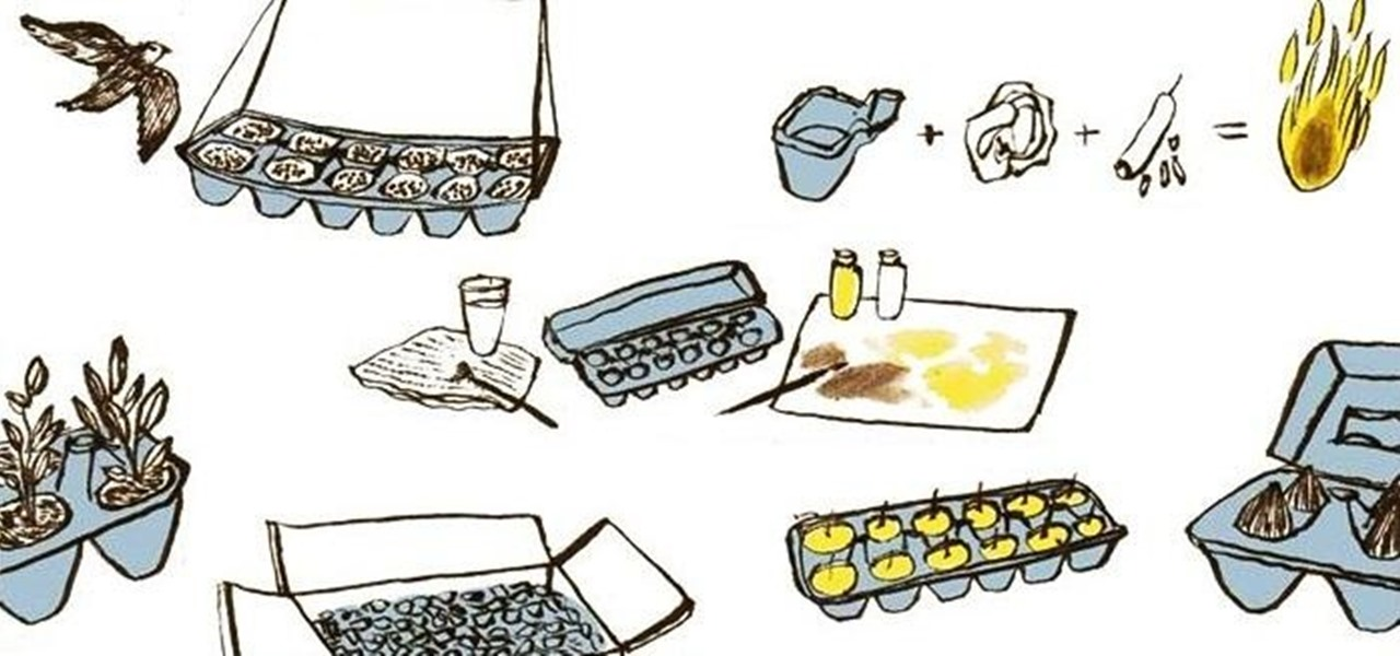 7 Great Uses for Egg Cartons