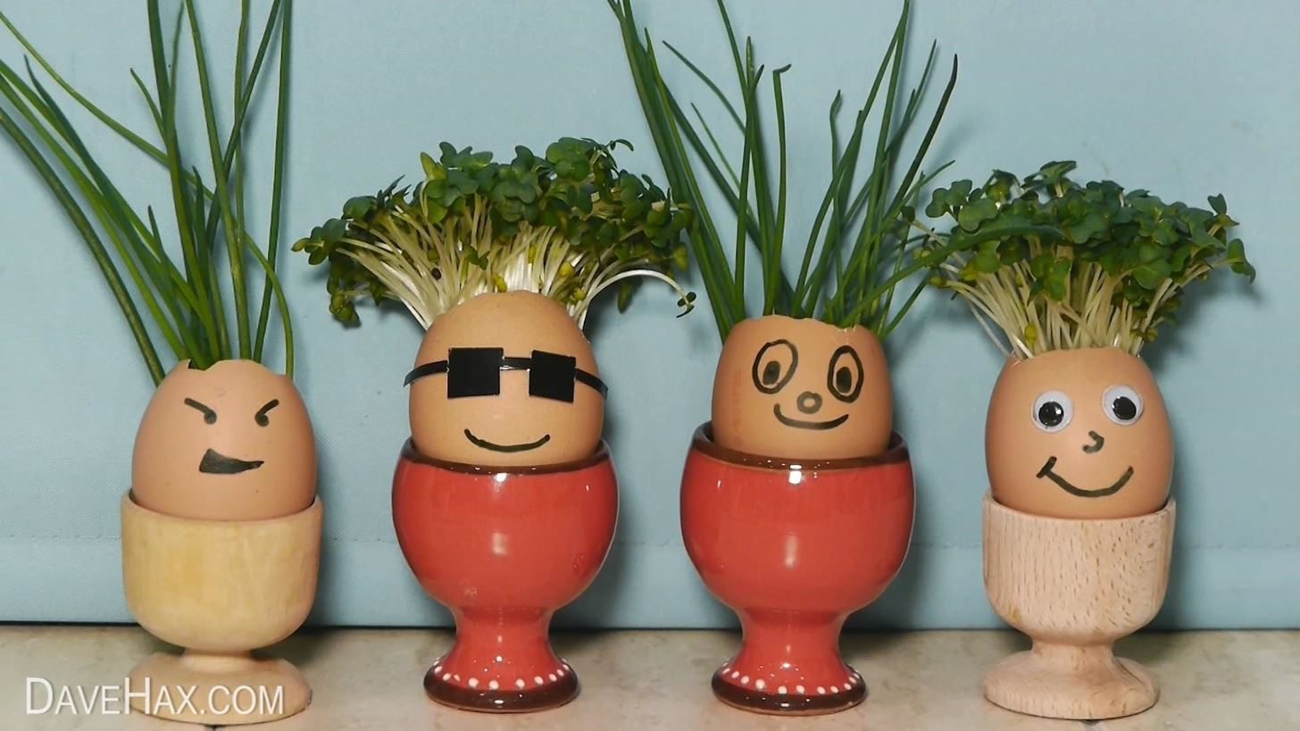 Alternative Easter Eggs « Gardening :: WonderHowTo - photo#15