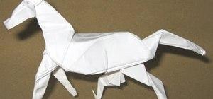 Origami a horse by David Brill