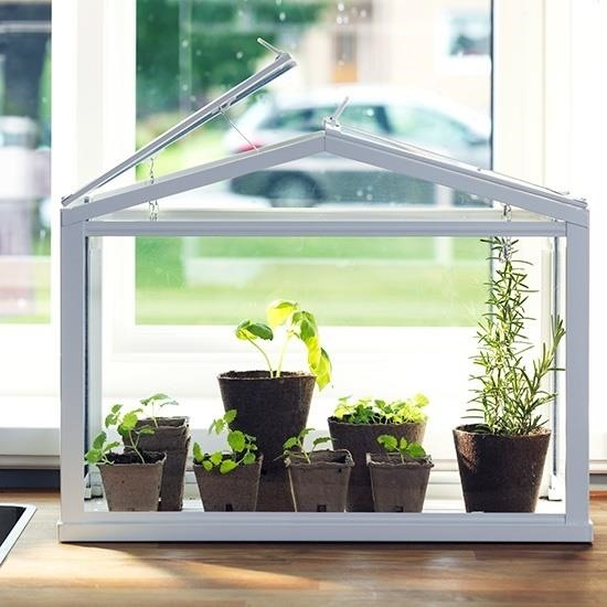 Grow Fresh Herbs Amp Veggies Indoors With A Tabletop