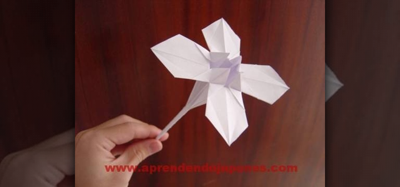 How To Make A Origami Goldfish 3d