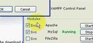 Install Apache and MySQL