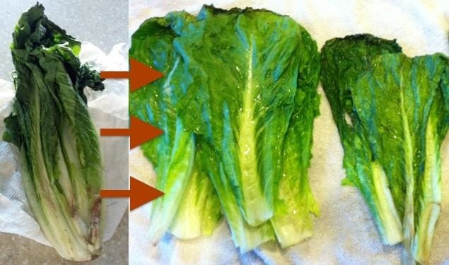 Simply Good Wilted Lettuce Salad | Thriving Home