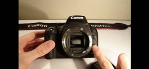 Use the Canon 500D dslr