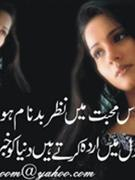 arzoo