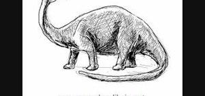 Draw a simple brontosaurus (brontosaurio) dinosaur