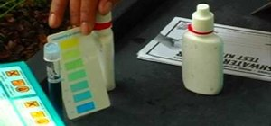 test your pond water's PH level
