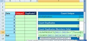Count unique & duplicate records in Microsoft Excel