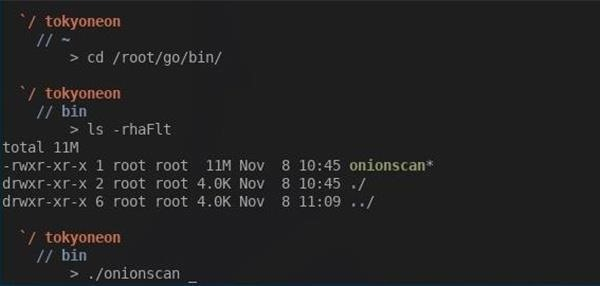 How to Detect Misconfigurations in 'Anonymous' Dark Web Sites with OnionScan