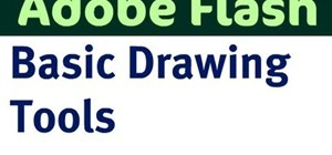 Use basic drawing & selection tools in Adobe Flash