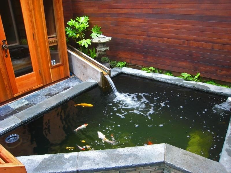 How to Choose the Right Water Feature for Your Garden