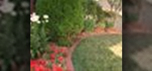 Install brick edging to your flower beds