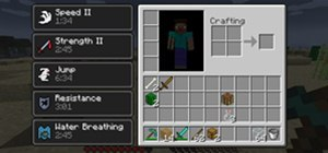 Make Minecraft Potions