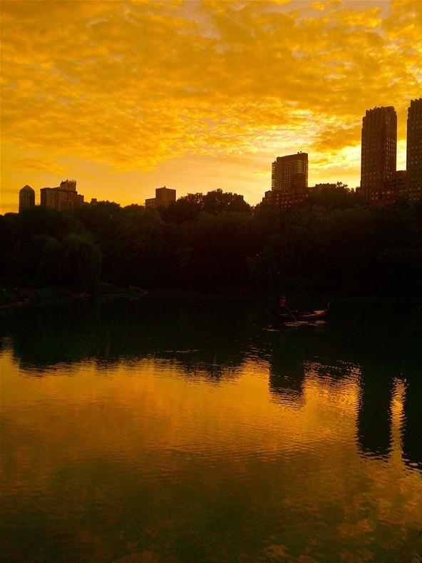 Silhouette Challenge: Central Park