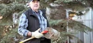 Chop firewood and kindling with an ax