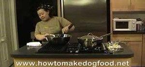 Makea healthy homemade dog food