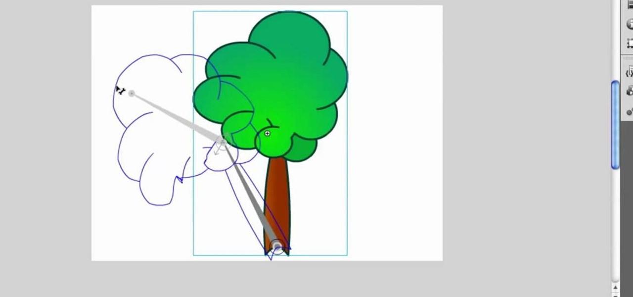 adobe flash cs3 tools panel pdf free