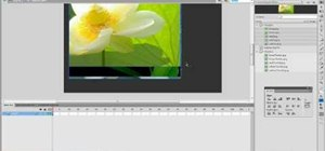 Make a slideshow using Flash CS4