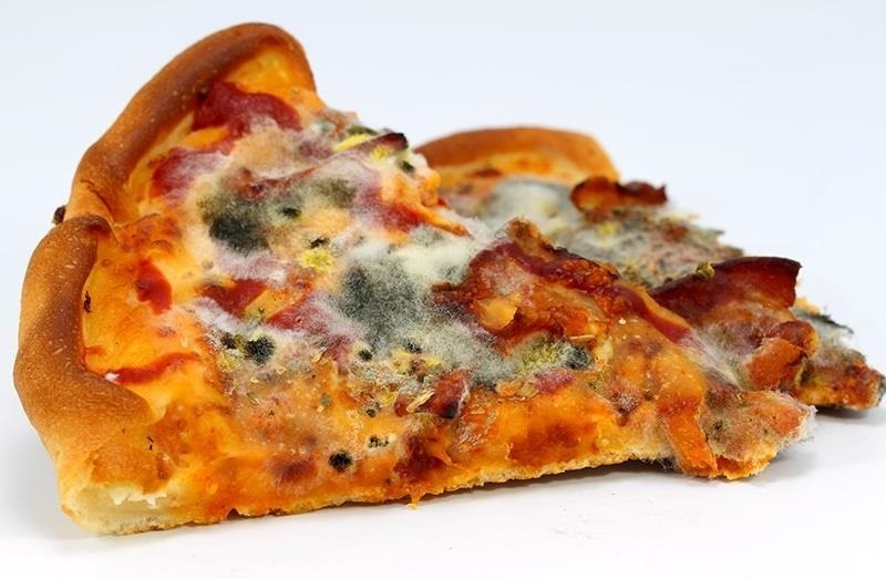 Image result for mouldy pizza