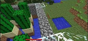 Make a Cacti spawner and collector in MineCraft