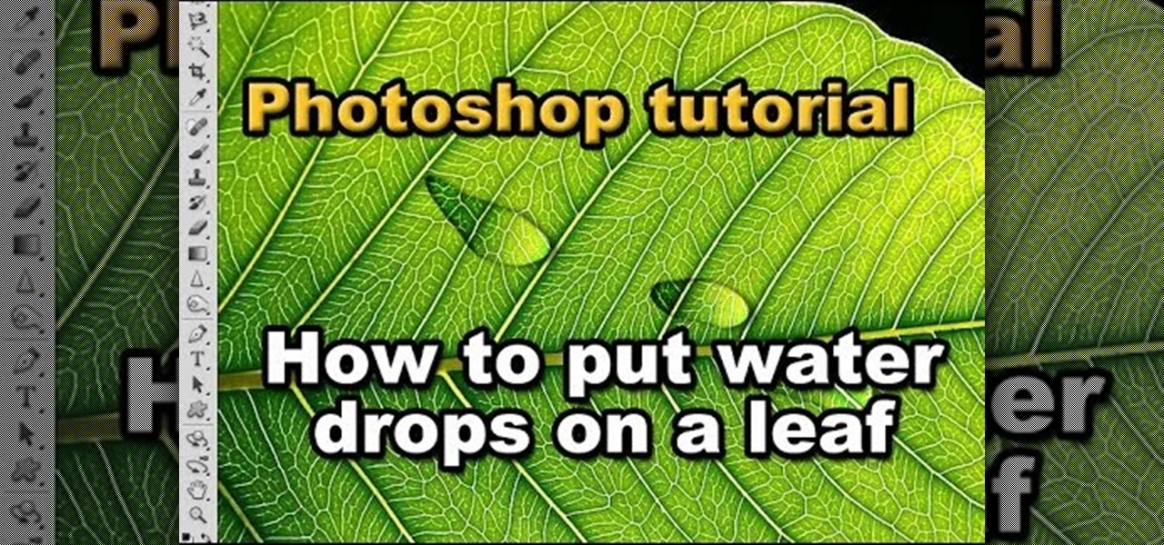how to put guidelines in photoshop