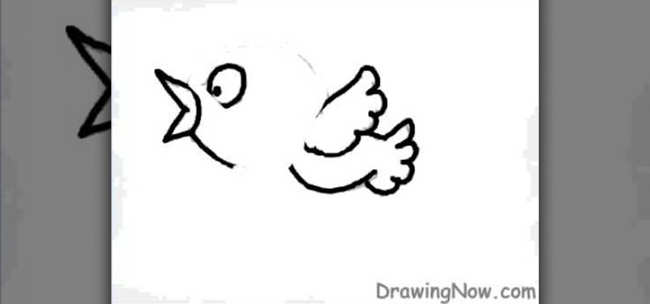 how to draw a cute blue cartoon bird drawing illustration wonderhowto