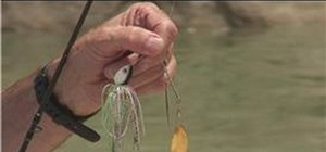 Work a spinner bait