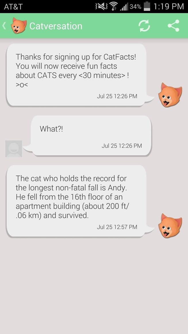 How To Prank Your Friends With Random Cat Facts Text