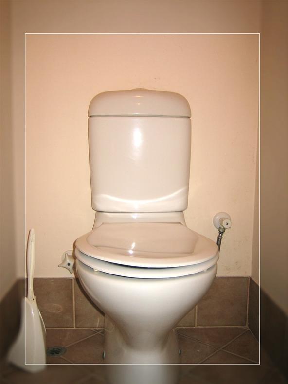 Saran Wrap Toilets