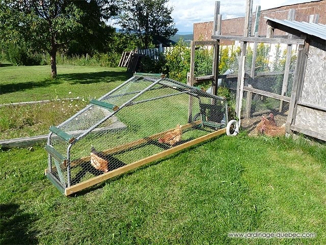 How to build a chicken coop on wheels chicken tractor or for Diy portable chicken coop