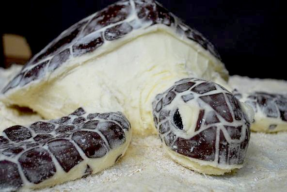 Beautiful Sea Turtle Cake