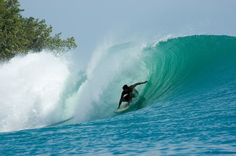 Epic Left in Bocas del Toro