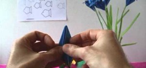 Fold an advanced form origami iris