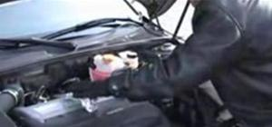 Cook freeway pig on  your car engine