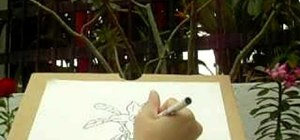 Easily draw flowers step by step