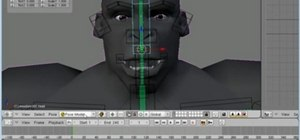 Create a face rig for a 3D model in Blender 2.4 or 2.5