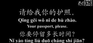 "Say ""Your passport, please"" in Mandarin Chinese"