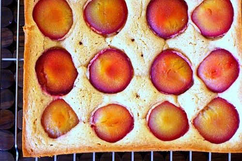 RECIPE: Dimply Plum Cake « CAKES! CAKES! CAKES!