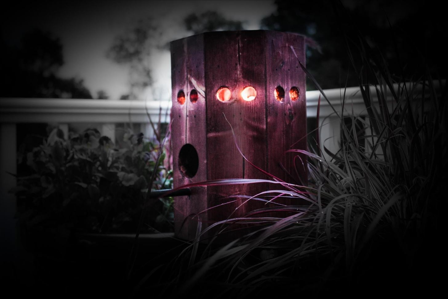 How to Build a Solar Birdhouse