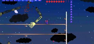 Beat the Terraria boss Skeletron with basic equipment in