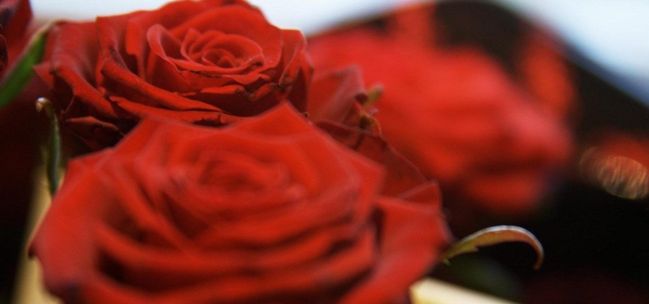 Spend Less on Last-Minute Valentine's Day Flowers for Your Girlfriend